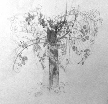 Tree (sketch)