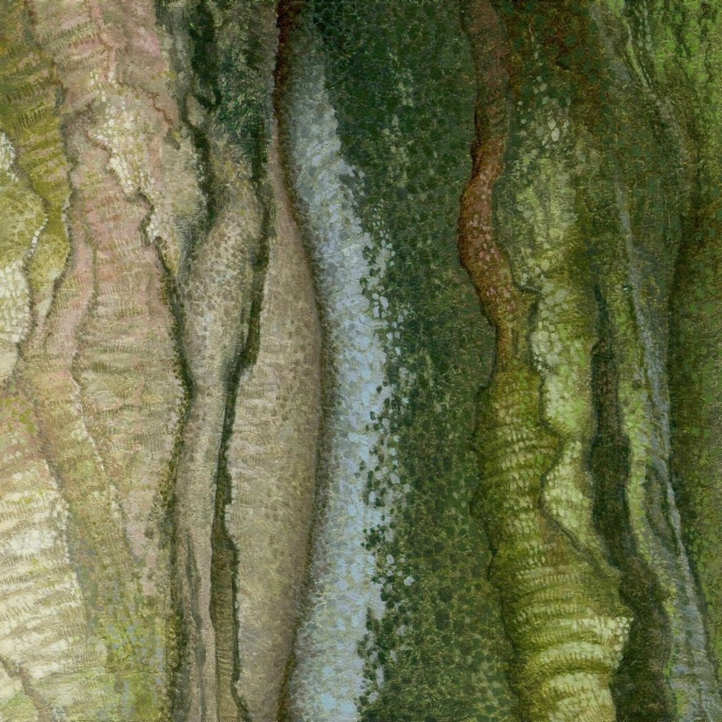 Ode to a beech tree, detail