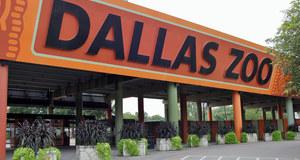 Dallas Zoo 9-28-12