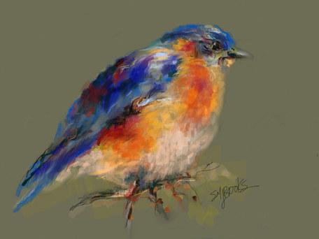 Winter BlueBird