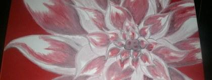 My flower paintings