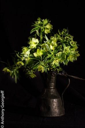 Flower No. 14