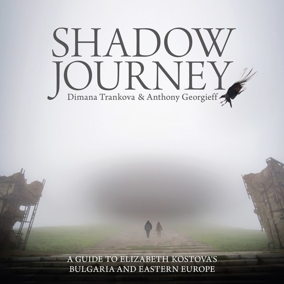 Shadow Journey