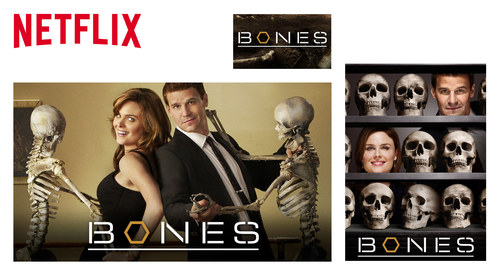 Netflix Website Show Images | Bones